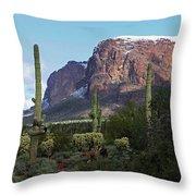 Cholla  Saguaro Superstition Mountain Throw Pillow