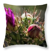 Cholla With Wasp Throw Pillow