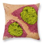 Chondrocytes, Tem Throw Pillow