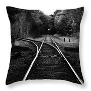 Choosing Your Path Throw Pillow