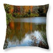 Chris Greene Lake - Reflections Throw Pillow
