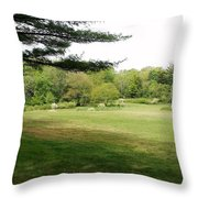 Christ And Nature  Throw Pillow