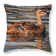 Christchurch New Zealand Grey Duck Throw Pillow