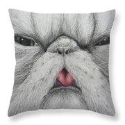 Christinas Kittycat Throw Pillow