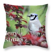 Christmas And Blue Jay Throw Pillow