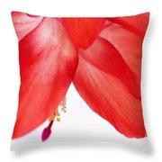 Christmas Cactus Macro Throw Pillow
