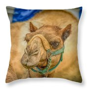 Christmas Camel On Call Throw Pillow