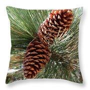 Christmas Pine Cones Throw Pillow