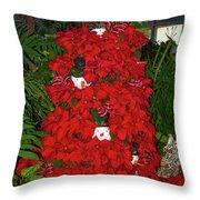 Christmas Poinsettia Display 002 Throw Pillow