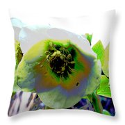 Christmas Rose  Throw Pillow