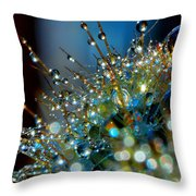 Christmas Tree Made Of Cactus And Water Drops Throw Pillow