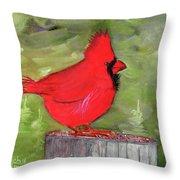 Christopher Cardinal Throw Pillow by Rich Stedman