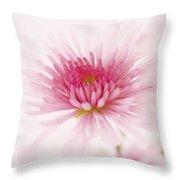 Chrysanthemum #004 Throw Pillow