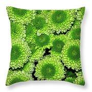 Chrysanthemum Green Button Pompon Kermit Throw Pillow