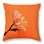 Chrysanthemum Orange Throw Pillow