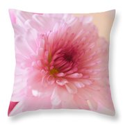 Chrysanthemums #011 Throw Pillow