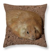 Chubby Prairie Dog Resting In A Shallow Hole Throw Pillow