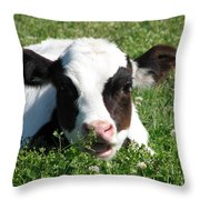 Chuck Throw Pillow