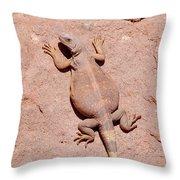 Chuckwalla, Saurolamus Ater Throw Pillow