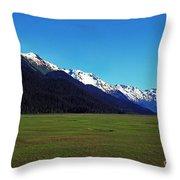 Chugach Mountains Green Plain Throw Pillow