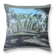Cimmeron Grasslands Throw Pillow