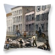 Cincinnati Hog Herding Throw Pillow