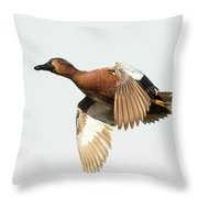 Cinnamon Teal On The Wing Throw Pillow
