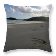 Cinnamon Toes In The Sand Throw Pillow