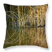 Circle Of Fall In Yellowstone Throw Pillow