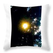 Circle Of Sunglow Through Pine Throw Pillow