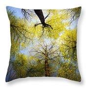 Circle Of Trees Throw Pillow