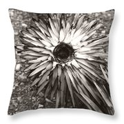 Circle Top Of Joshua Tree Throw Pillow