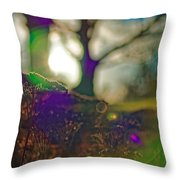 Circles Of Light And Color Throw Pillow