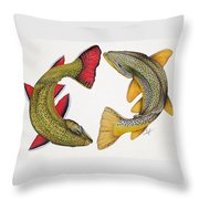 Circling Brook And Brown Trout Throw Pillow