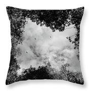 Circling Overhead Throw Pillow