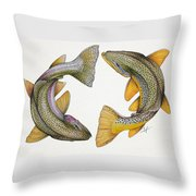 Circling Rainbow And Brown Trout Throw Pillow