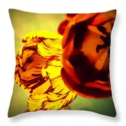 Circus Of Color Throw Pillow