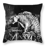 Circus: Tigers Throw Pillow