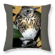 Ciripica Throw Pillow