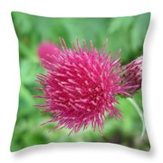 Cirsium Burgandy Thistle Throw Pillow