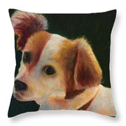 Cisco Throw Pillow