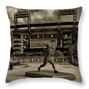 Citizens Park Panoramic Throw Pillow