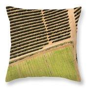 Citrus Farms In Moroccos Productive Throw Pillow