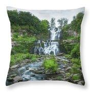 Cittenango Falls Tilt Shift Panorama  Throw Pillow