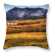 City - Arizona - Southwestern Cargo Train Throw Pillow