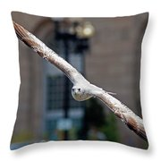 City Gull Throw Pillow
