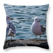 City Gulls Throw Pillow