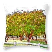 City Park 9 Throw Pillow