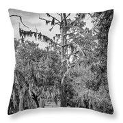 City Park Lagoon - Bw Throw Pillow
