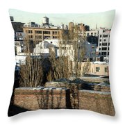Cityscape Queens Throw Pillow
